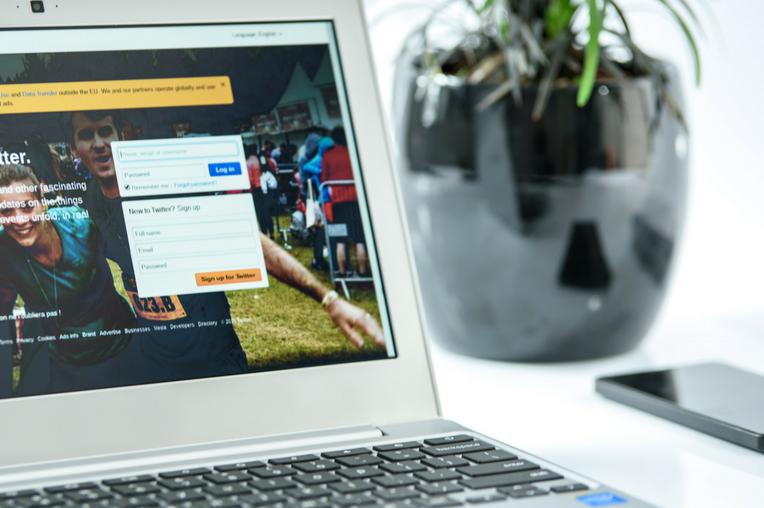 Website Laptop Plant